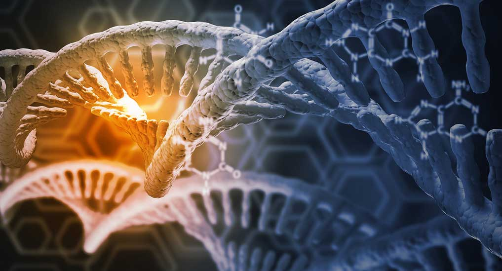 Gene therapy restores immunity in infants with rare genetic disease