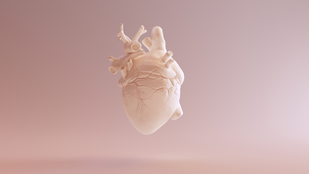 Scientists create first 3D heart using patient's own cells
