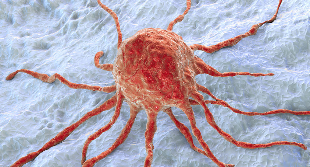 Microvesicles developed to  targeted delivery  of cancer drugs